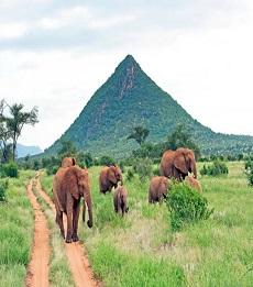Samburu and Naivasha