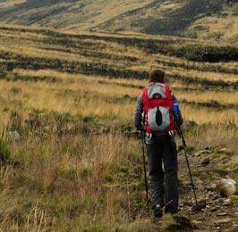 Sirimon - Chogoria or Vise Versa Trekking Safari