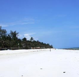 The Diani Beach Tour