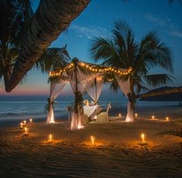 The Great Africaluxury Honeymoon Safari