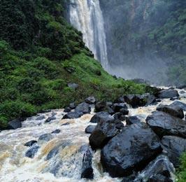 Thomson Falls Tour