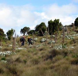 Sirimon - Naromoru Trekking Safari