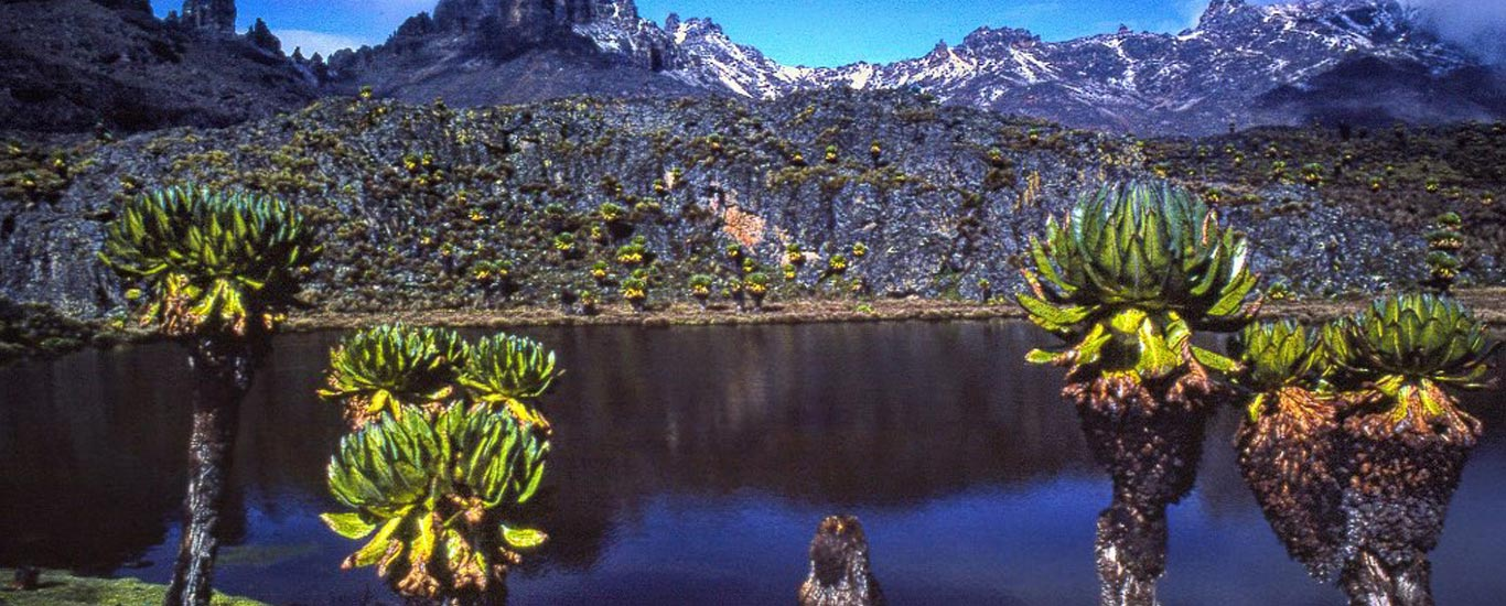 Chogoria - Naromoru Trekking Safari