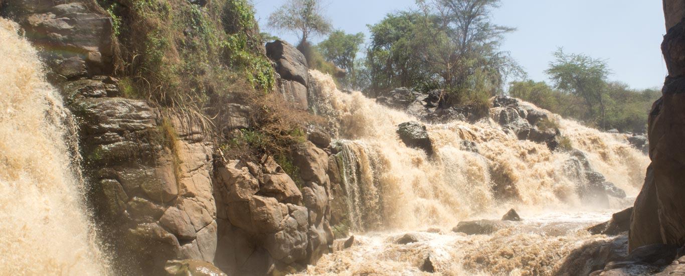 Eastern Ethiopia Tour